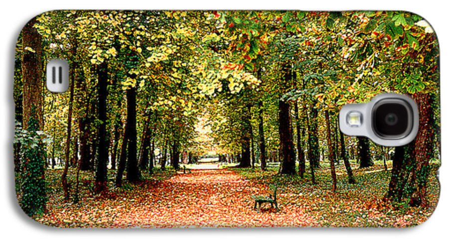 Autumn Galaxy S4 Case featuring the photograph Autumn In The Park by Nancy Mueller