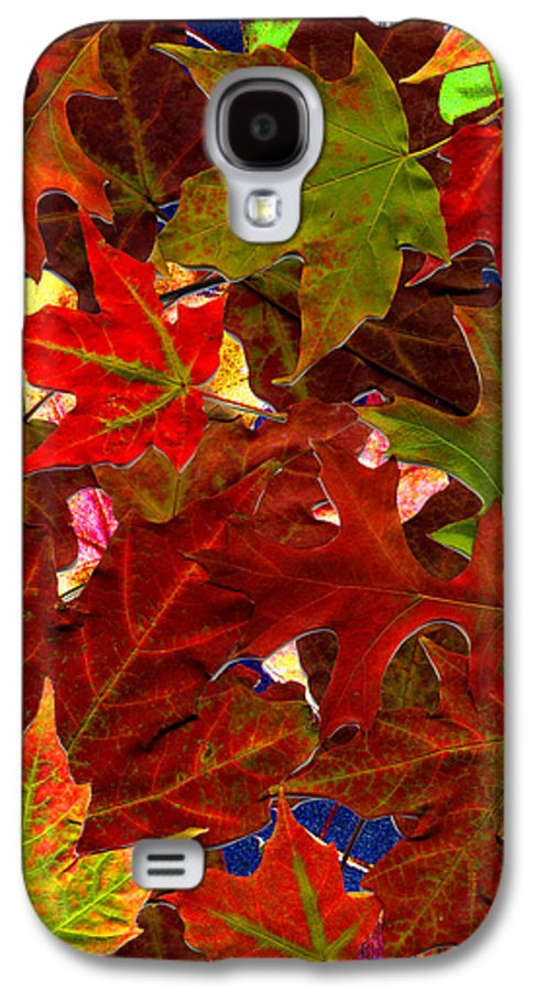 Collage Galaxy S4 Case featuring the photograph Autumn Leaves by Nancy Mueller