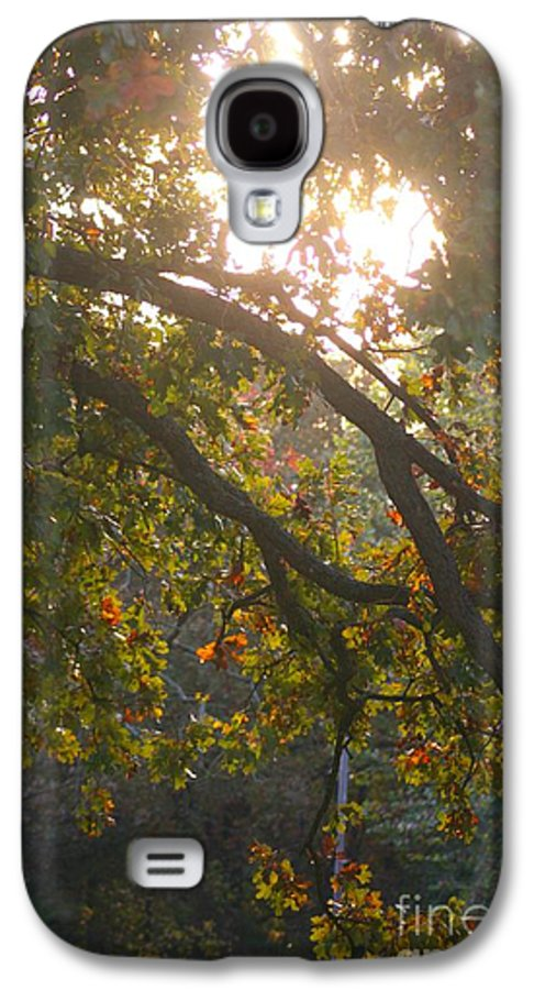 Autumn Galaxy S4 Case featuring the photograph Autumn Morning Glow by Nadine Rippelmeyer