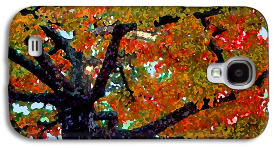 Fall Galaxy S4 Case featuring the photograph Autumn Tree by Steve Karol