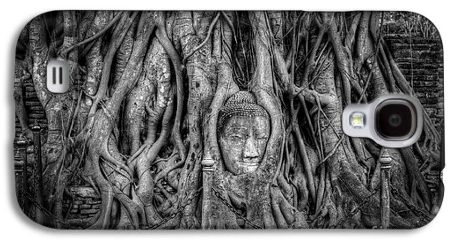 Ayutthaya Galaxy S4 Case featuring the photograph Banyan Tree by Adrian Evans
