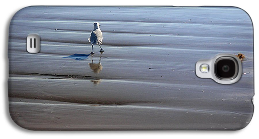 Nature Galaxy S4 Case featuring the photograph Being One With The Gulf - Escaping by Lucyna A M Green