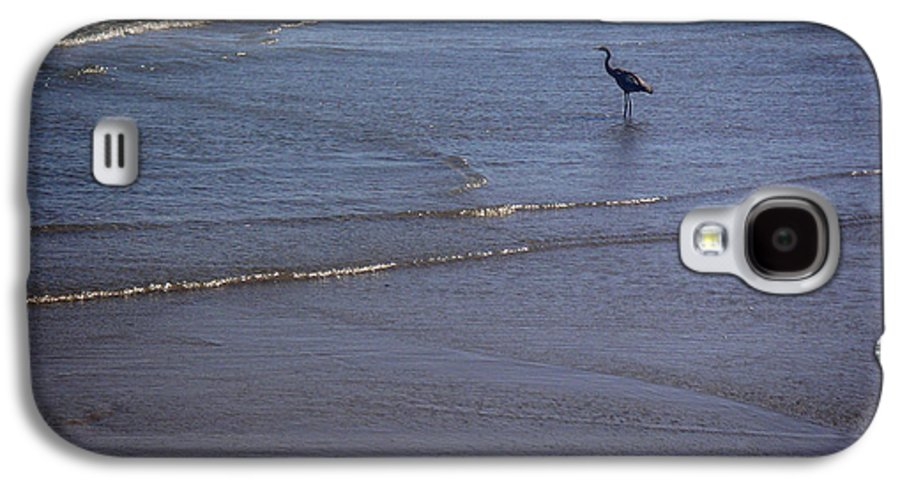 Nature Galaxy S4 Case featuring the photograph Being One With The Gulf - Watching by Lucyna A M Green
