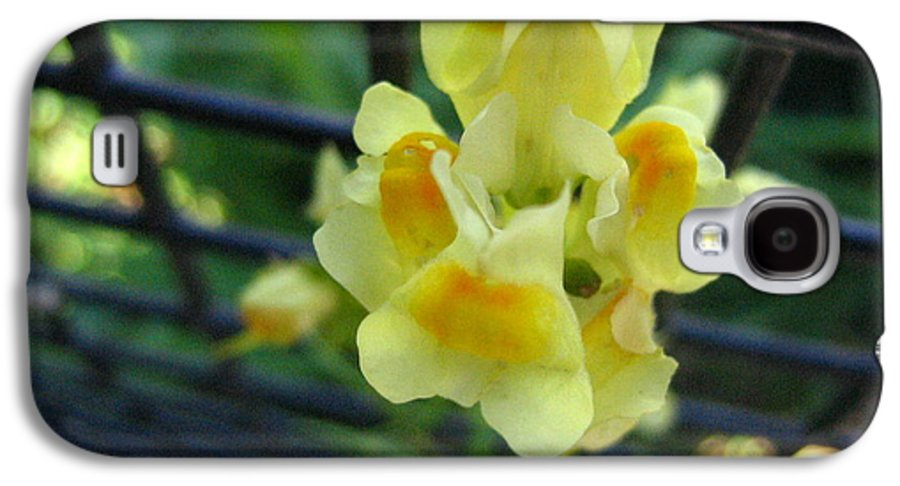 Flower Galaxy S4 Case featuring the photograph Between The Fences by Melissa Parks