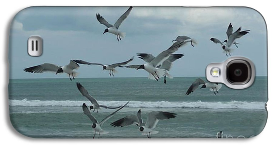 Birds Galaxy S4 Case featuring the photograph Birds In Flight by Barb Montanye Meseroll