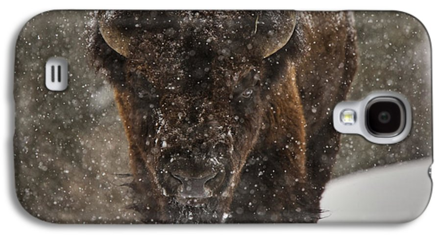 Wildlife Galaxy S4 Case featuring the digital art Bison Buffalo Wyoming Yellowstone by Mark Duffy