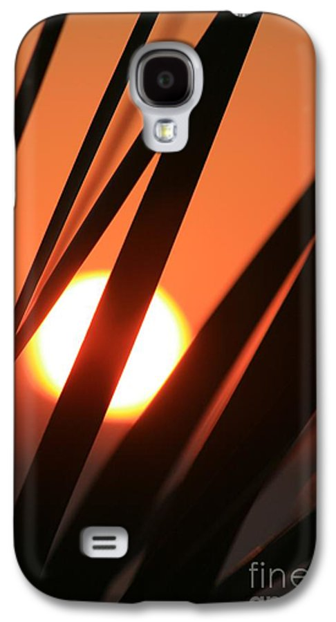 Sun Galaxy S4 Case featuring the photograph Blazing Sunset And Grasses by Nadine Rippelmeyer