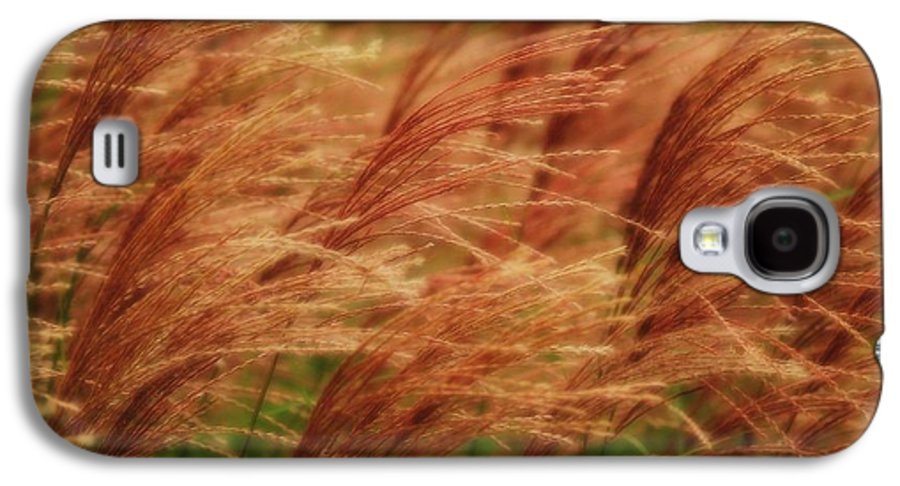Win Galaxy S4 Case featuring the photograph Blowing In The Wind by Gaby Swanson