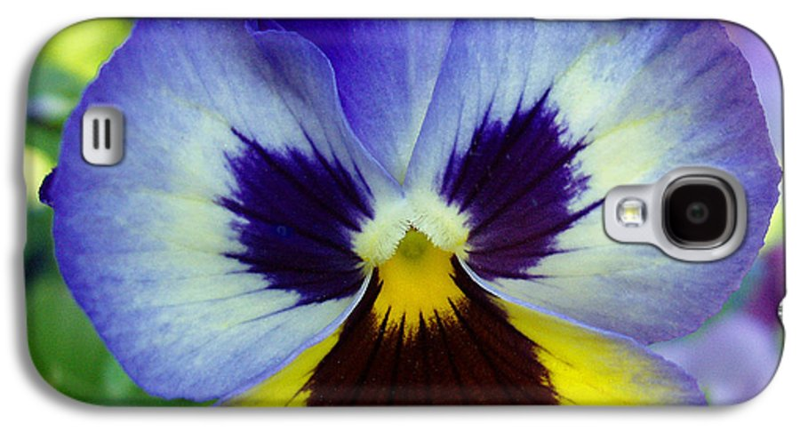 Flowers Galaxy S4 Case featuring the photograph Blue And Yellow Pansy by Nancy Mueller
