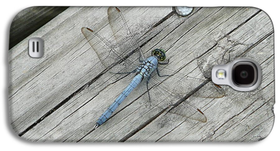 Dragonfly Galaxy S4 Case featuring the photograph Blue Dragonfly by Kathy Schumann