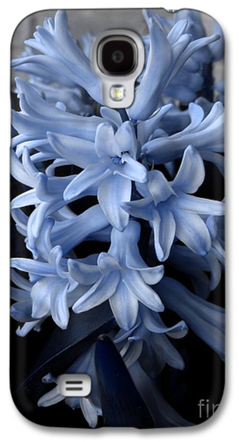 Blue Galaxy S4 Case featuring the photograph Blue Hyacinth by Shelley Jones