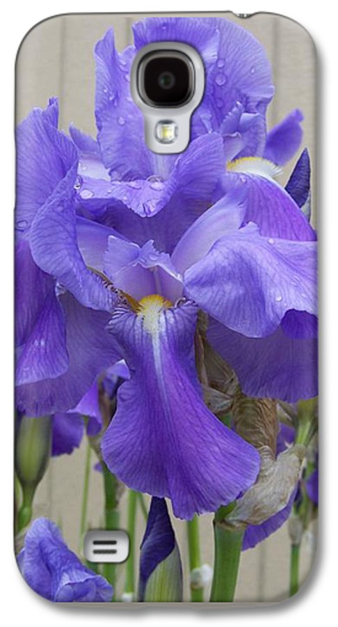 Flowers Galaxy S4 Case featuring the photograph Blue Iris by Laurie Kidd