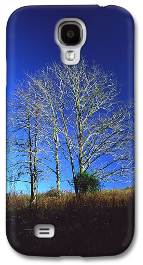 Landscape Galaxy S4 Case featuring the photograph Blue Tree In Tennessee by Randy Oberg