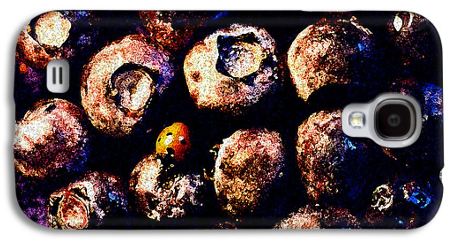 Blueberries Galaxy S4 Case featuring the photograph Blueberries And Ladybug by Nancy Mueller