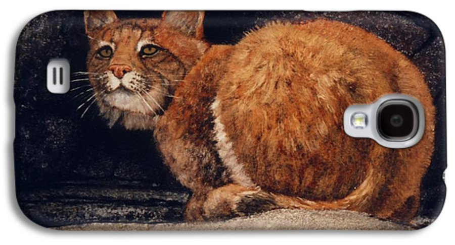 Wildlife Galaxy S4 Case featuring the painting Bobcat On Ledge by Frank Wilson