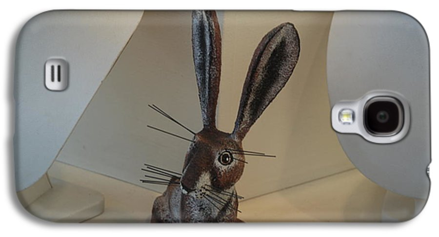 Rabbit Galaxy S4 Case featuring the photograph Boink Rabbit by Rob Hans