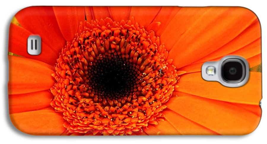 Flower Galaxy S4 Case featuring the photograph Bright Red by Rhonda Barrett