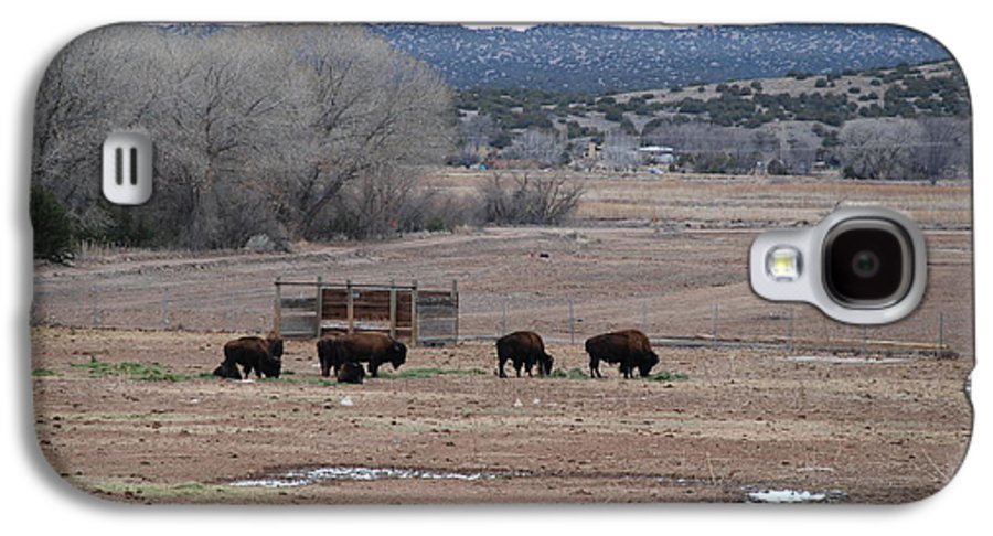 Buffalo Galaxy S4 Case featuring the photograph Buffalo New Mexico by Rob Hans