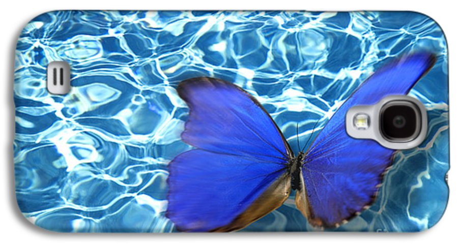 Animals Galaxy S4 Case featuring the photograph Butterfly by Tony Cordoza