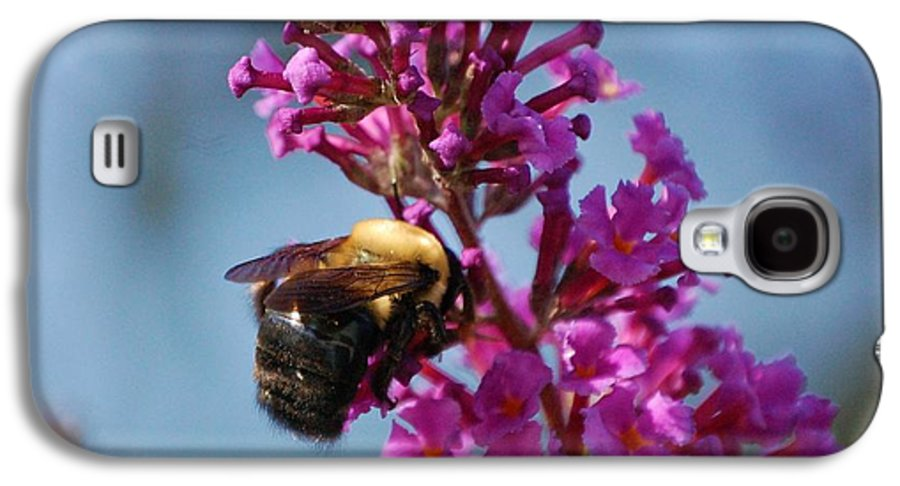 Bee Galaxy S4 Case featuring the photograph Buzzed by Debbi Granruth