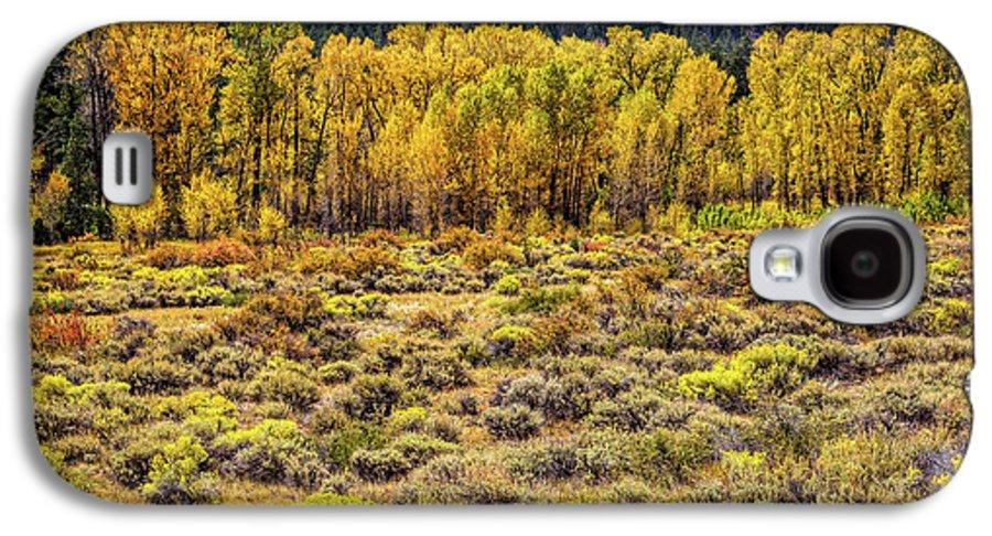 Cache La Poudre River Colors Galaxy S4 Case featuring the photograph Cache La Poudre River Colors by Jon Burch Photography