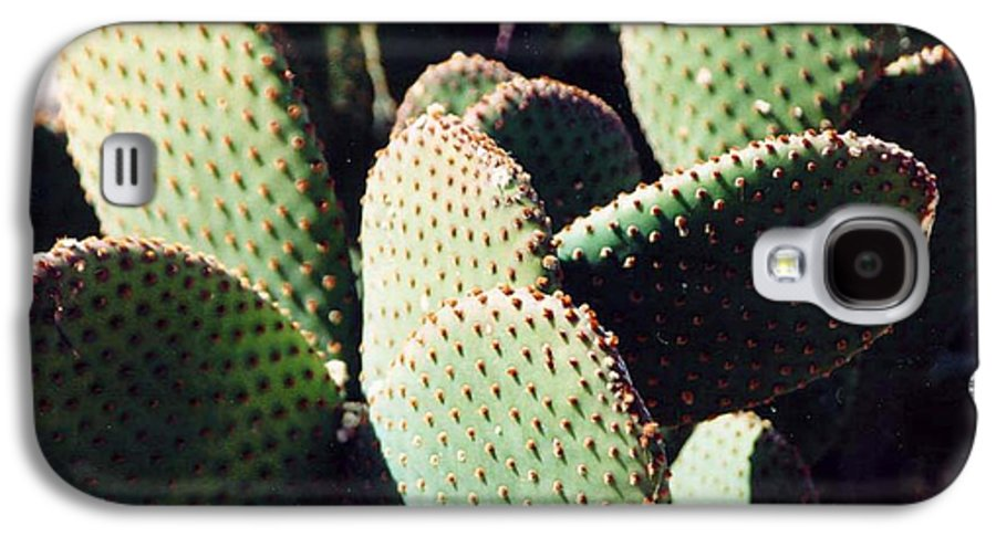 Field Galaxy S4 Case featuring the photograph Cactus by Margaret Fortunato