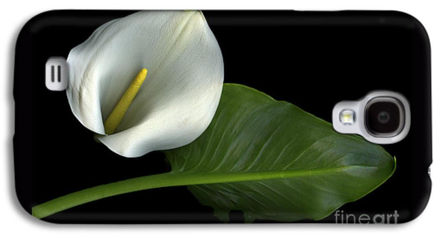 Scanography Galaxy S4 Case featuring the photograph Calla Lily by Christian Slanec