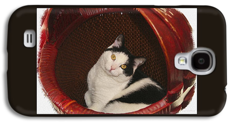 Cat Galaxy S4 Case featuring the photograph Cat In A Basket by Margie Wildblood