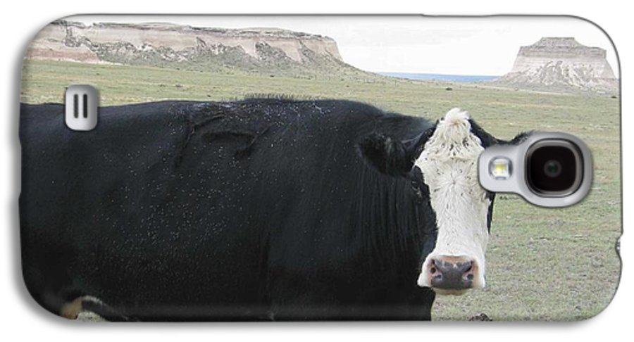 Rural Galaxy S4 Case featuring the photograph cattle at Pawnee Butte Colorado by Margaret Fortunato