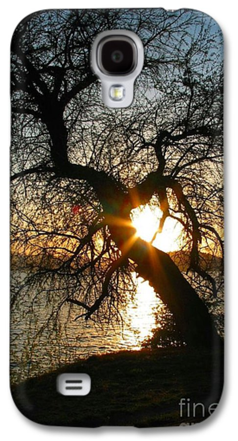 Tree Galaxy S4 Case featuring the photograph Character by Idaho Scenic Images Linda Lantzy