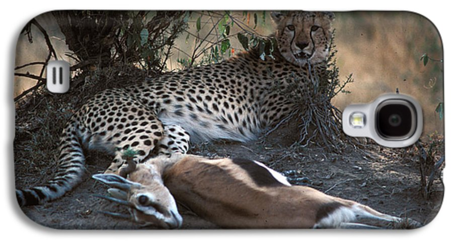 Spots Galaxy S4 Case featuring the photograph Cheetah With Kill by Carl Purcell