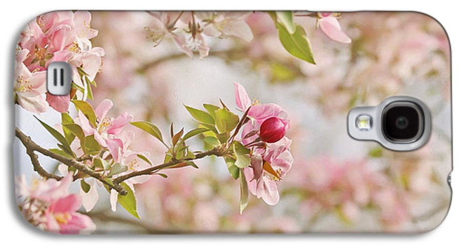 Cherry Blossom Galaxy S4 Case featuring the photograph Cherry Blossom Delight by Kim Hojnacki