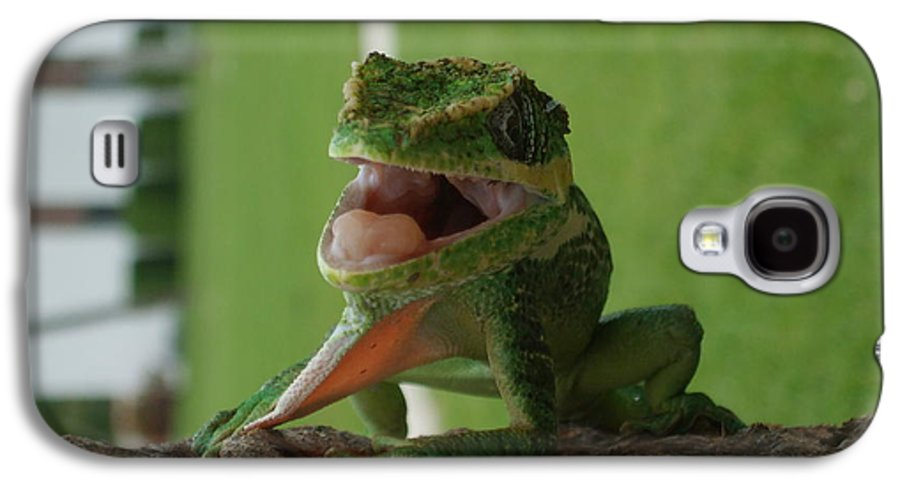 Iguana Galaxy S4 Case featuring the photograph Chilling On Wood by Rob Hans