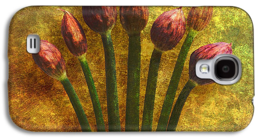Texture Galaxy S4 Case featuring the digital art Chives Buds by Digital Crafts