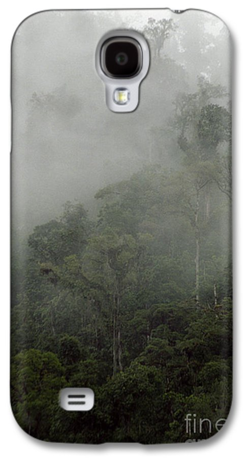 Rainforest Galaxy S4 Case featuring the photograph Cloud Forest by Kathy McClure