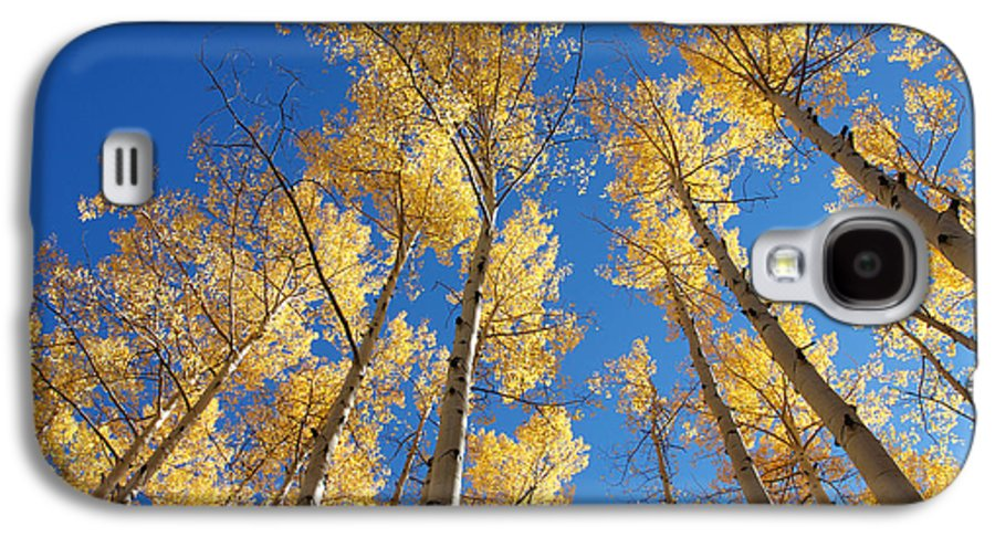 Aspen Galaxy S4 Case featuring the photograph Colorado Aspen by Jerry McElroy