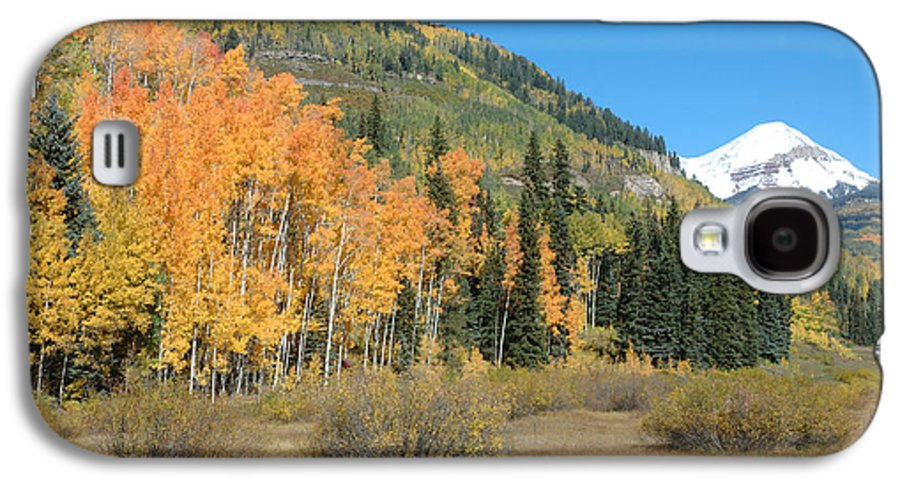 Aspen Galaxy S4 Case featuring the photograph Colorado Gold by Jerry McElroy