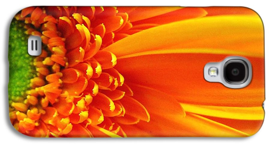 Red Galaxy S4 Case featuring the photograph Colors Galore by Rhonda Barrett