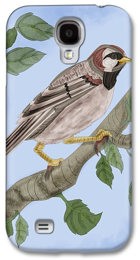 Sparrow Galaxy S4 Case featuring the painting Common House Sparrow by Anne Norskog