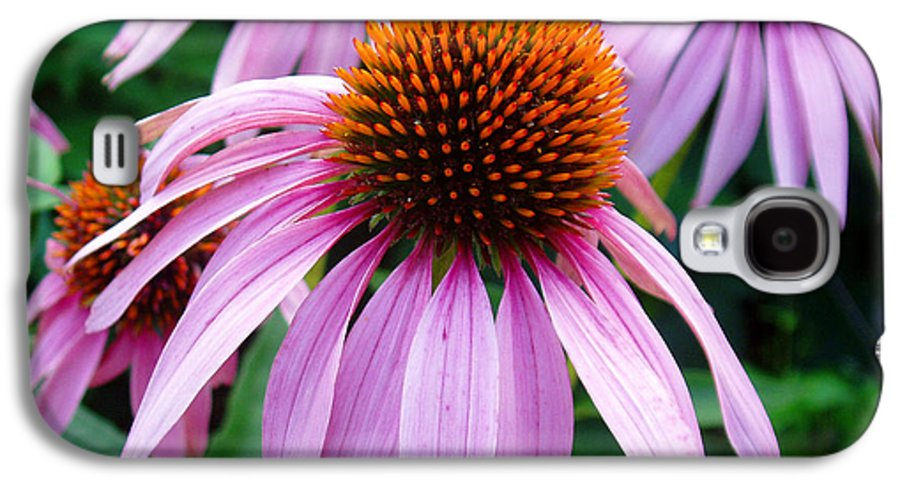 Coneflowers Galaxy S4 Case featuring the photograph Three Coneflowers by Nancy Mueller