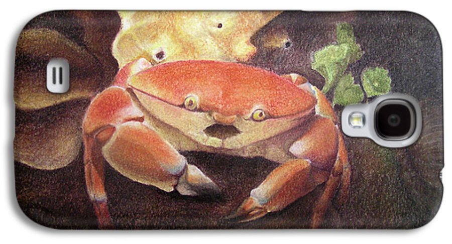 Animals Galaxy S4 Case featuring the painting Coral Crab by Adam Johnson