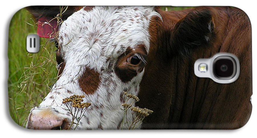 Tongue Galaxy S4 Case featuring the photograph Cow Tongue by Louise Magno