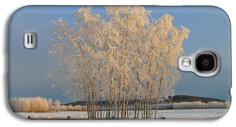 Snow Galaxy S4 Case featuring the photograph Creamer Field by Louise Magno