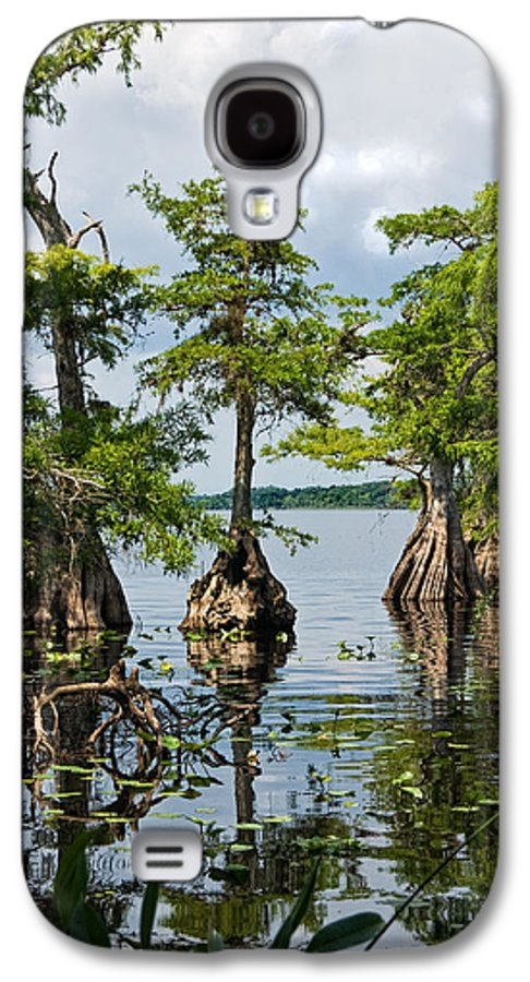 Trees Galaxy S4 Case featuring the photograph Cypress Reflections by Christopher Holmes