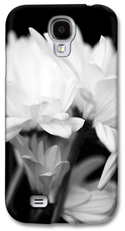 Floral Galaxy S4 Case featuring the photograph Daises In Black And White by Ayesha Lakes