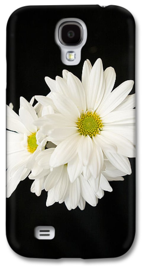 Floral Galaxy S4 Case featuring the photograph Daisies by Ayesha Lakes