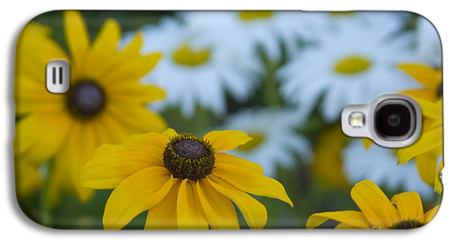 Daisy Galaxy S4 Case featuring the photograph Daisies by Idaho Scenic Images Linda Lantzy