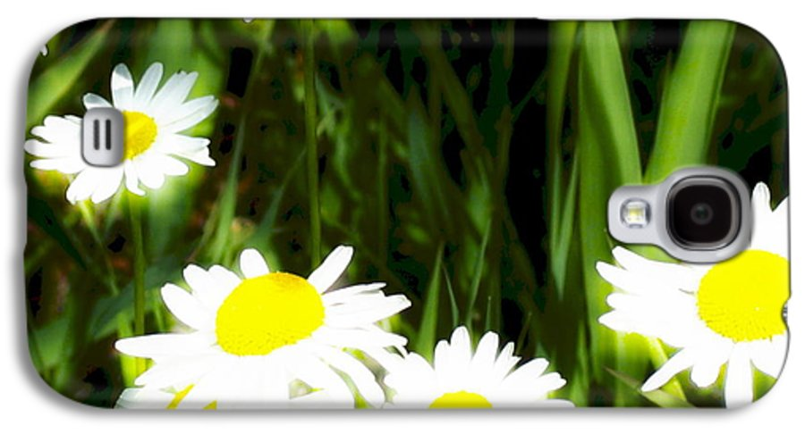 Daisies Galaxy S4 Case featuring the photograph Daisy Dream by Idaho Scenic Images Linda Lantzy
