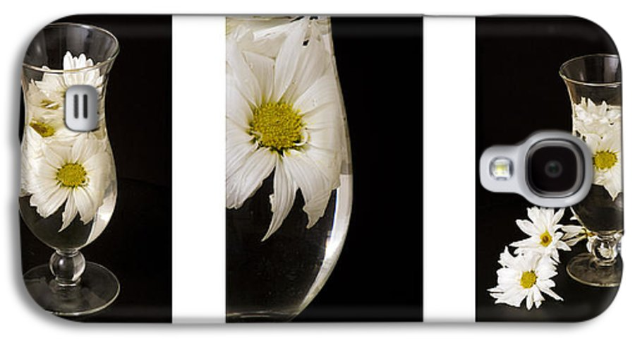 Flowers Galaxy S4 Case featuring the photograph Daisy Triptych by Ayesha Lakes