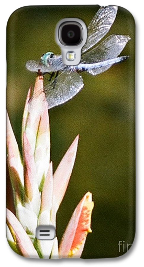Dragonfly Galaxy S4 Case featuring the photograph Damselfly by Dean Triolo